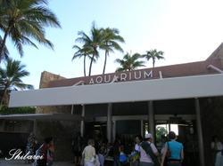12aquarium