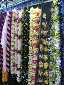 1lei_day8